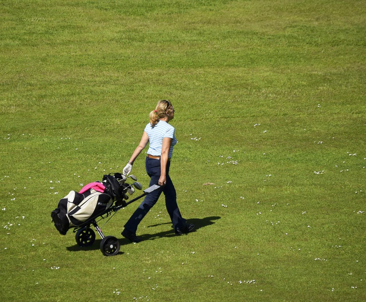 chariot golf électrique